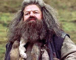 hagrid-harry potter-JK Rowling-Petronus