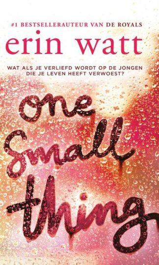 One small thing van Erin Watt